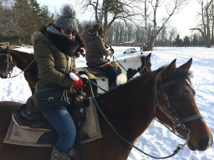 Winter-Adventure-Nestea-Horse