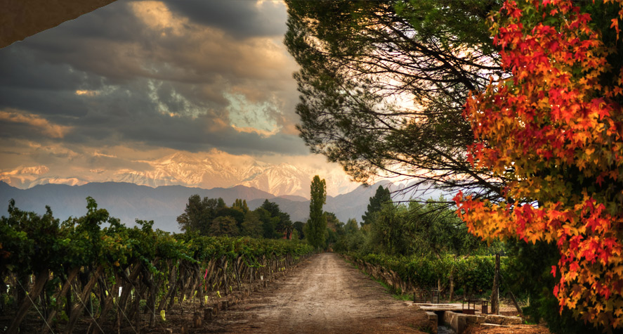 A Virtual Trip to Argentina with Kaiken Wines