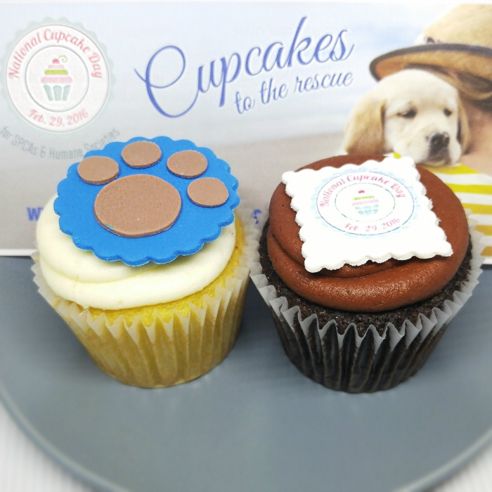national cupcake day 2016, national cupcake day, SPCA, Ontario SPCA, Humane Societies, pets, cupcakes