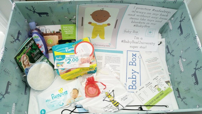 What Is A Baby Box Bassinet Elaine Loves